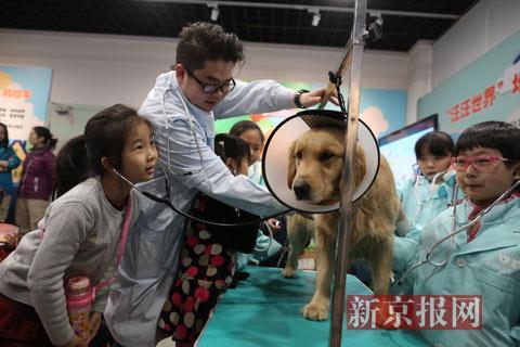 北京动物园生肖文化活动开幕 持续至3月2日