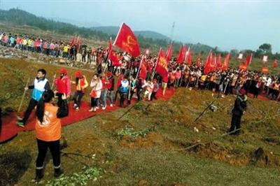 永州踩红地毯植树 林业局长被通报